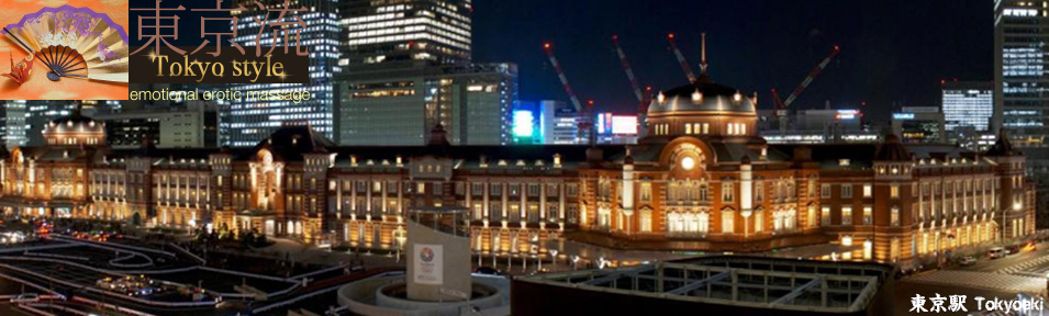 Tokyo Station Adult entertainment